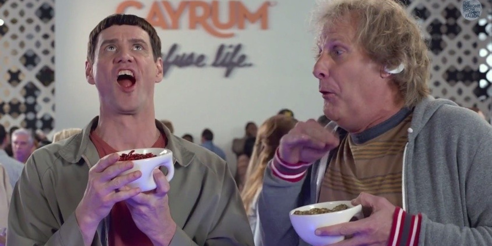 Dumb and dumber to 3